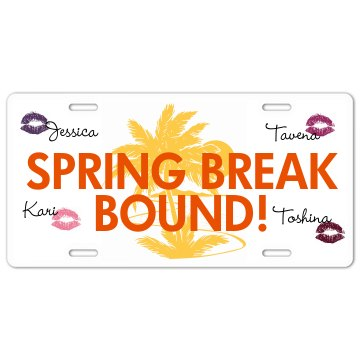 Spring Break Girls License Plate
