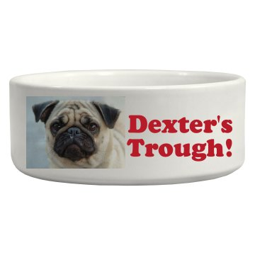 Dexter's Food Pic Upload Ceramic Pet Bowl