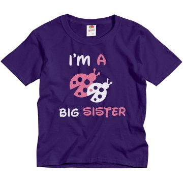 Big Sister Ladybug Tee Youth Gildan Ultra Cotton Crew Neck Tee