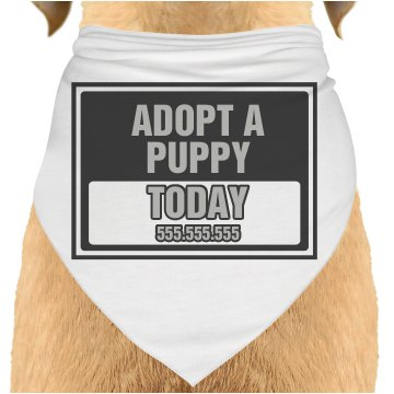 Adopt Today Sign Dog Bandana