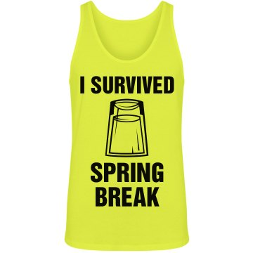 I Survived Spring Break Junior Fit Bella Crewneck Jersey Tee
