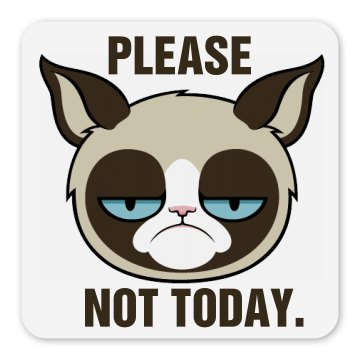 Grumpy Cat Magnet Square Magnet
