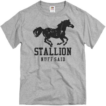 Stalion Distressed Tee Unisex Basic Gildan Heavy Cotton Crew Neck Tee