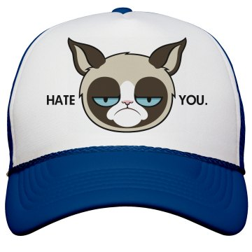 A Grumpy Cat Trucker