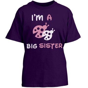 Big Sister Ladybug Tee Youth Gildan Heavy Cotton Crew Neck Tee
