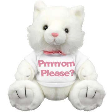 Prrrrrrom Please Bear Plush Kitty Cat