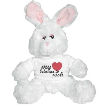 My Heart Belongs To Bunny Plush Bunny