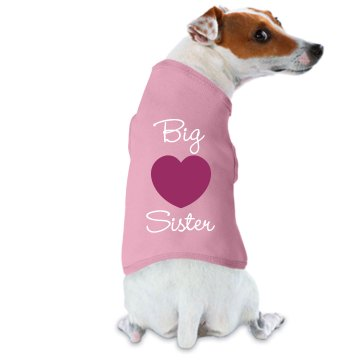 Big Sister Dog Tee Doggie Skins Dog Ringer Tee