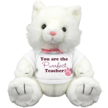 Purrfect Teacher Plush Kitty Cat