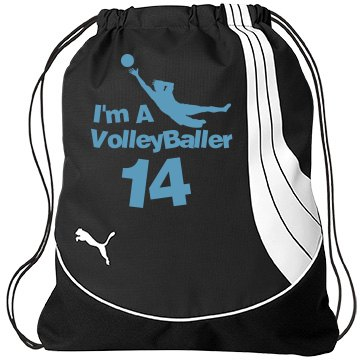 VolleyBaller